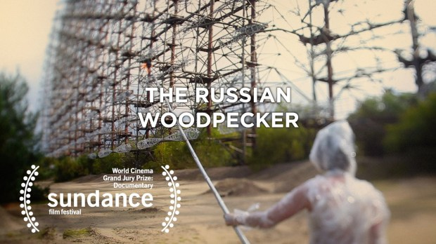russian woodpecker poster